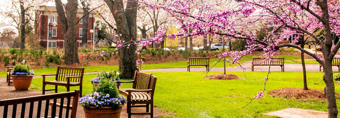Our Athens, GA hotel is surrounded by beautiful gardens and flowers on campus