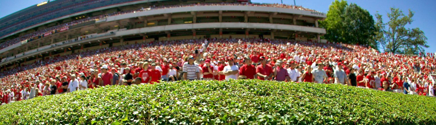 The hedges at Sanford Stadium near the UGA Hotel