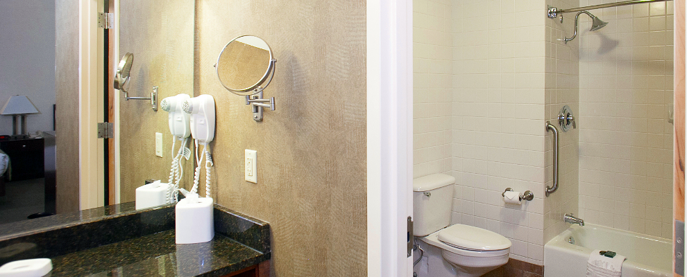 Select Guestrooms Bathroom
