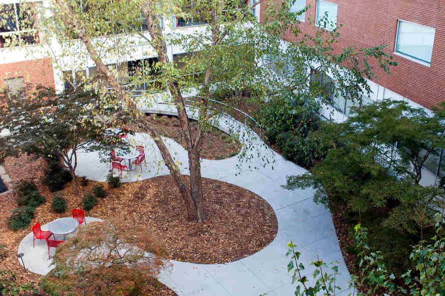 Kellogg Garden, outdoor meeting space