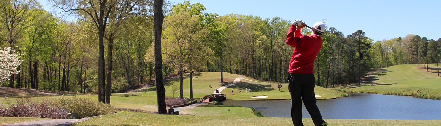 Hotel Amenities - UGA Golf Available