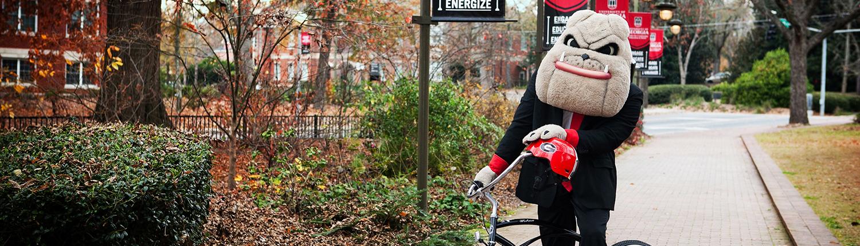 Borrow Bikes to Cruise Campus | UGA Hotel Amenities